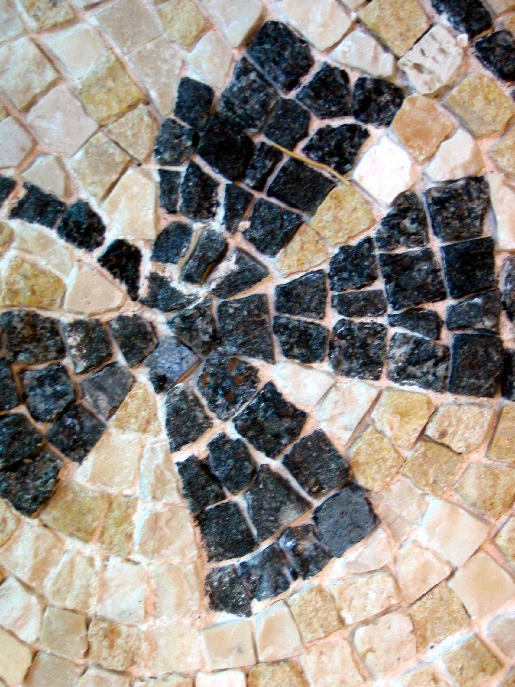 Mosaïque romaine flore molinaro